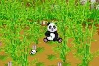 Granja de Panda