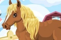 Qué Pony más lindo
