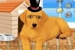 Viste al perrito 4