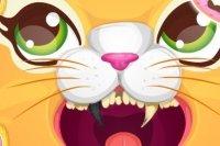 Dentista de Gatos